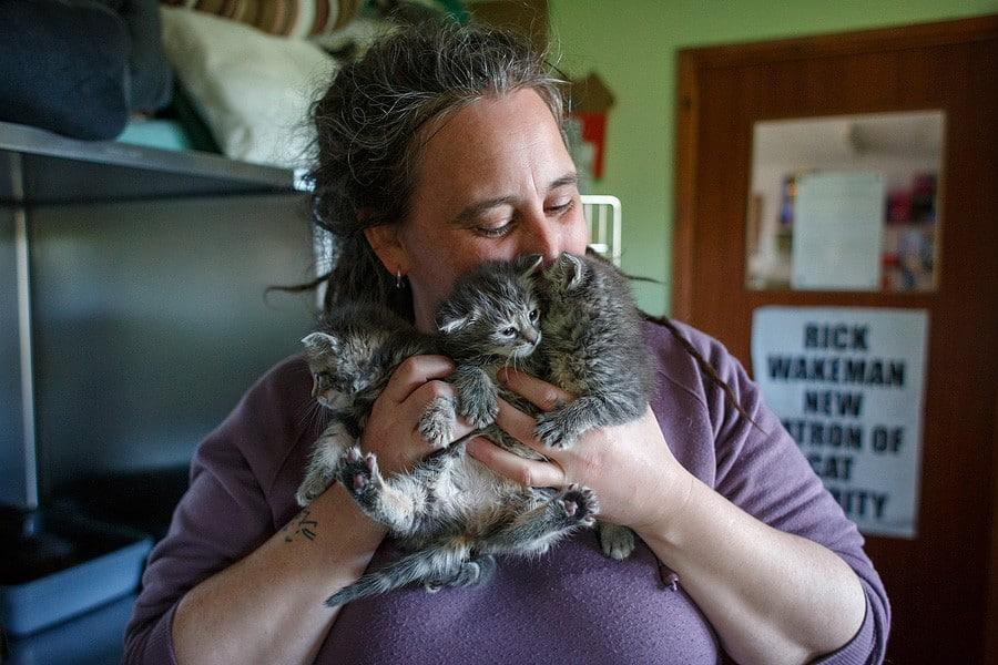 felinecare-may15-040