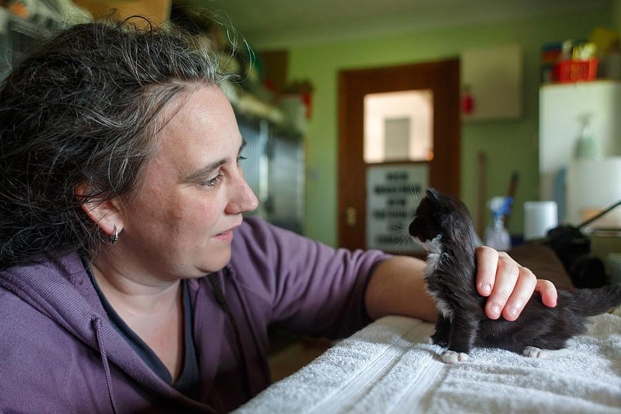 felinecare-may15-052