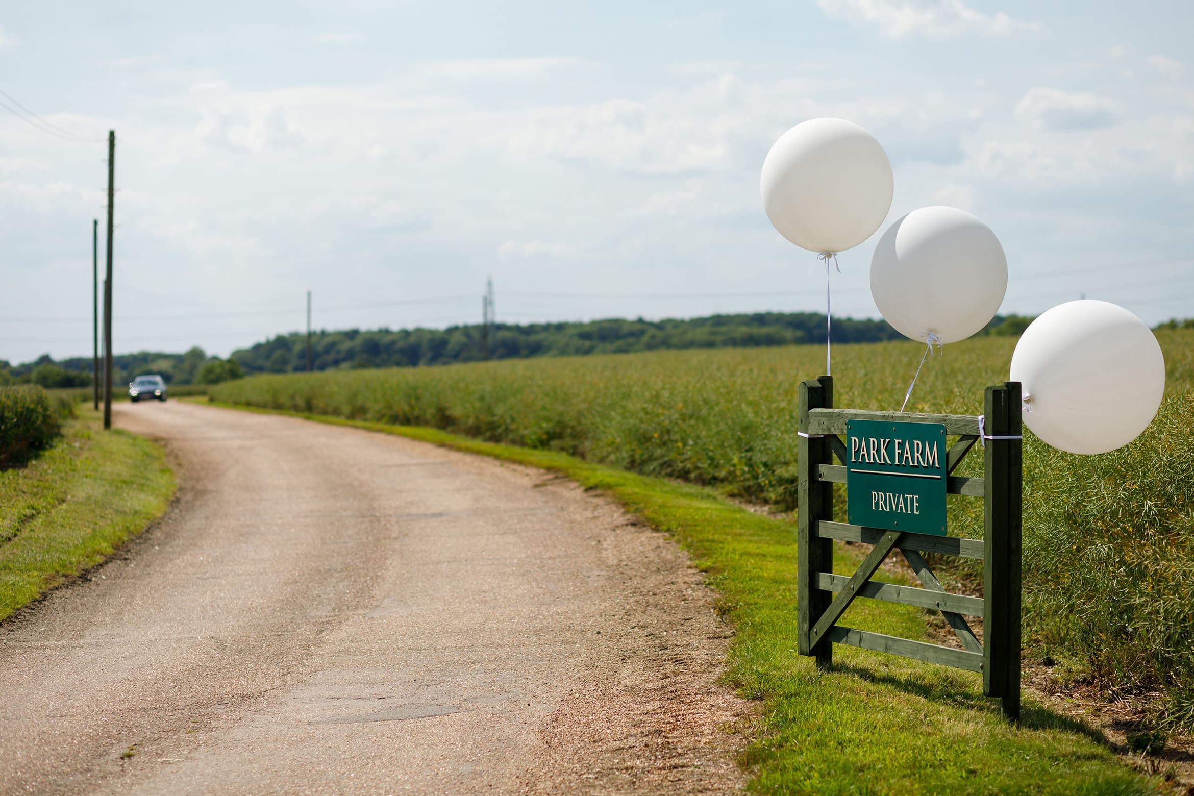 balloons at the entrance to the wedding reception