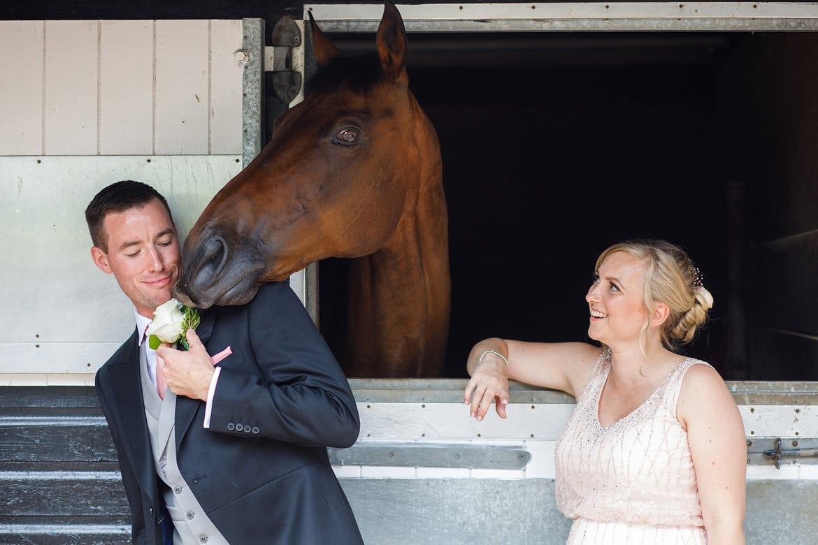 a horse tries to eat a wedding guests buttonhole