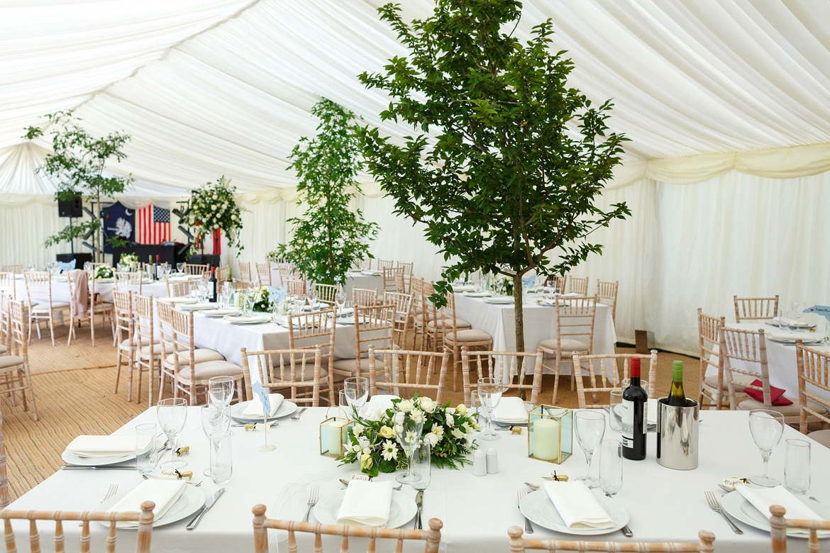 wedding detail photo of trees inside a wedding marquee
