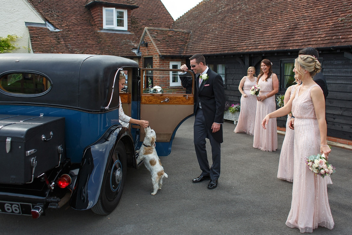 the bride is greeted by the family dog