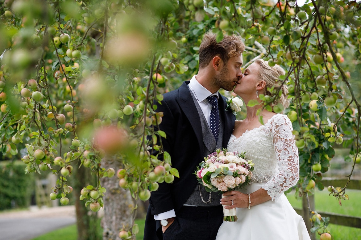 a couple portrait in the apple trees