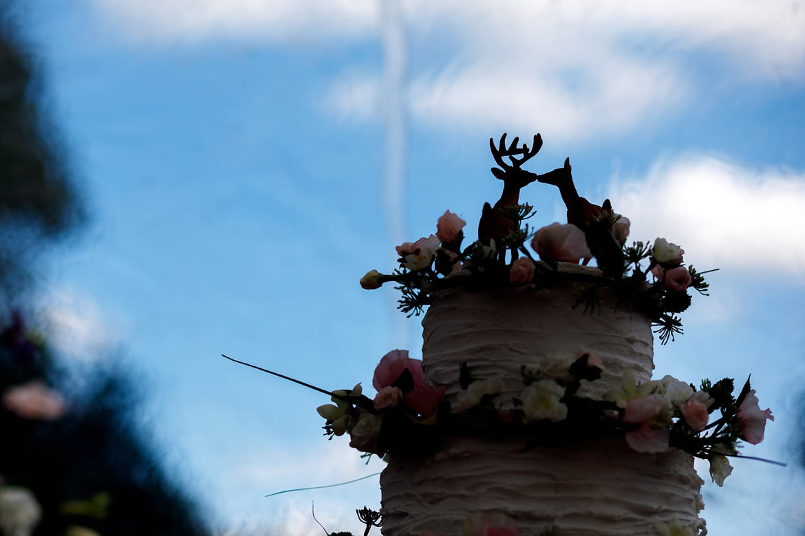a silhouette of the wedding cake